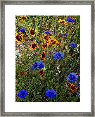 English Cottage Garden Flowers 4 Framed Print