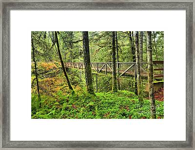 Englishman River Bridge Framed Print by Adam Jewell