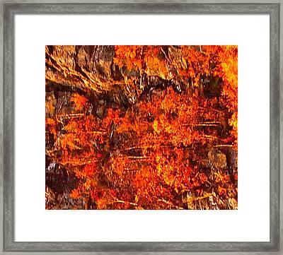 Enigma Orange Framed Print by Chris  Riley