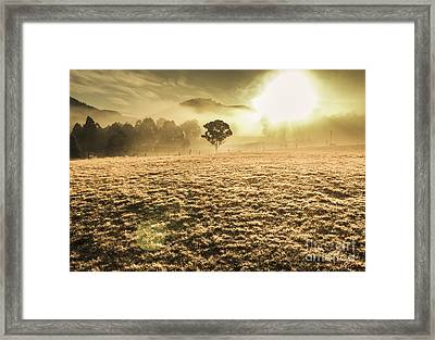 Enigmatic Grassland Framed Print by Jorgo Photography - Wall Art Gallery