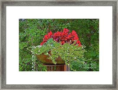 Enjoy The Garden Framed Print