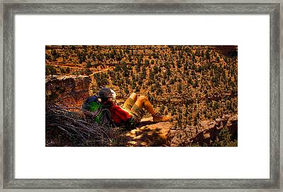 Enjoying The View Framed Print by David Patterson
