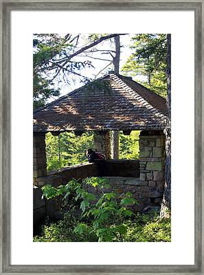 Framed Print featuring the photograph Enjoying The View by Greg DeBeck
