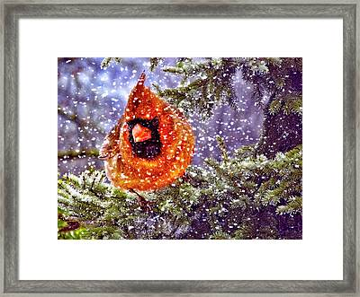 Framed Print featuring the photograph Enough Of This White Stuff by Diane Schuster
