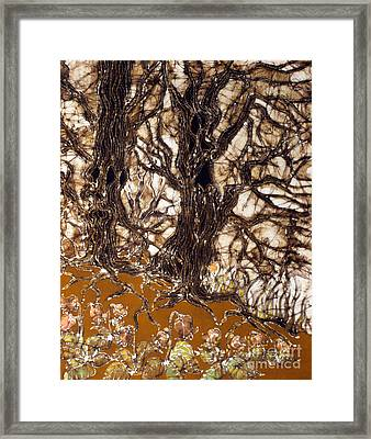 Ent Tree Forest Framed Print by Carol Law Conklin