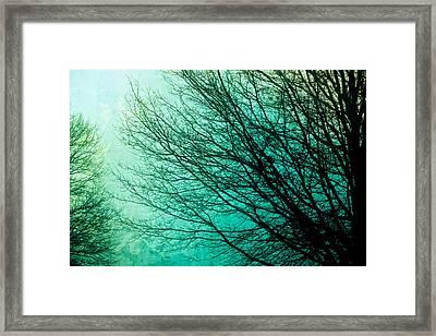 Entangled Framed Print by Colleen Kammerer