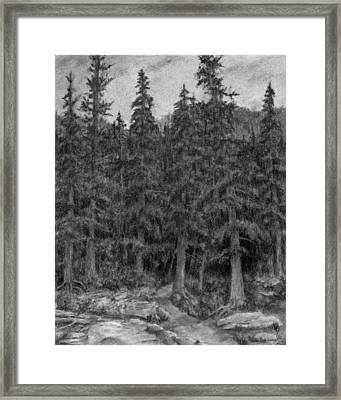 Enter The Forest Framed Print by David King