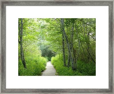 Entering Framed Print