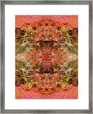 Entering The Garden Framed Print