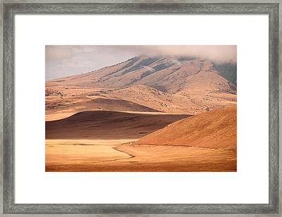 Entering The Serengeti Framed Print by Adam Romanowicz