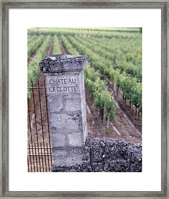 Entrance Of A Vineyard, Chateau La Framed Print by Panoramic Images