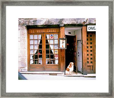 Entrance Paris France Framed Print