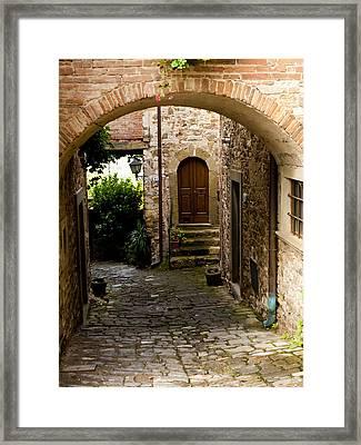 Entrance Framed Print by Rae Tucker