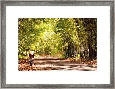 Jamaican Estate Framed Print