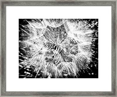 Entrancement  Framed Print