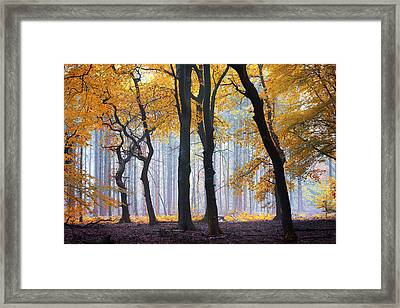 Ephemeral Treasure Framed Print