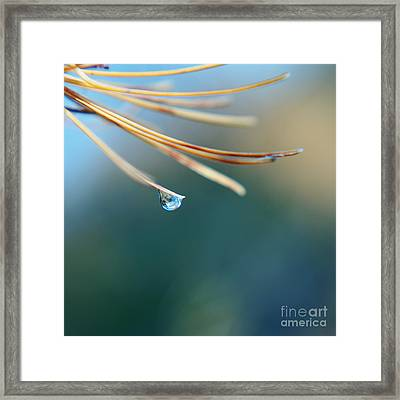 Epi-nette - 09-s04b Framed Print by Variance Collections