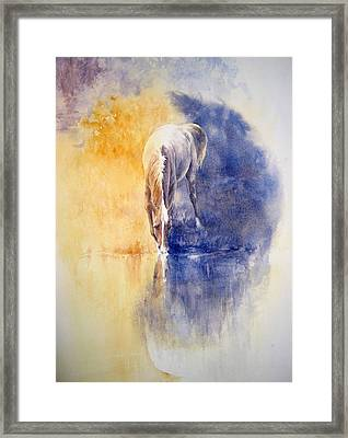 Equanimity Framed Print by Barbara Widmann
