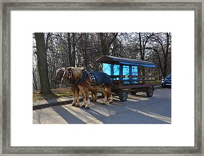 Equestrian Team Framed Print by Henryk Gorecki