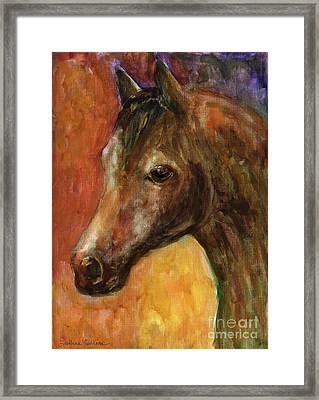 Equine Horse Painting  Framed Print by Svetlana Novikova