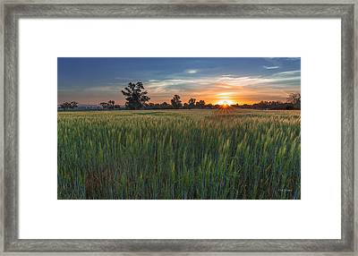 Equinox-first Sunrise Of Spring Framed Print