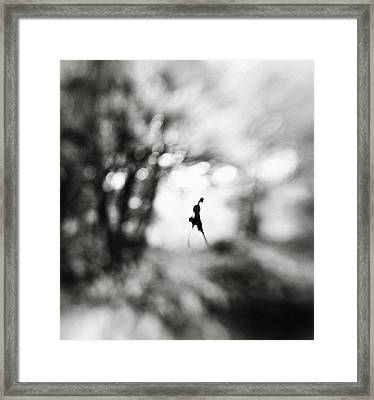 Equinox Framed Print by Hengki Lee