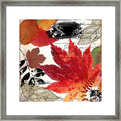 Equinox II Framed Print by Mindy Sommers