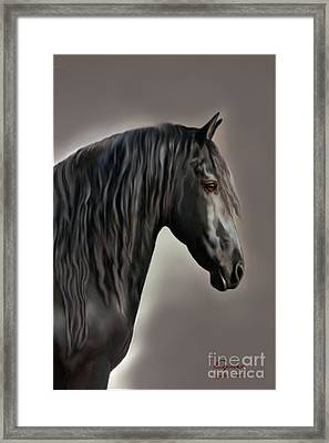 Equus Framed Print by Corey Ford