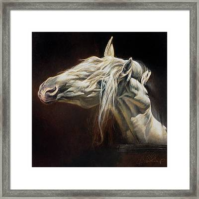 Equus Series I-iv Framed Print