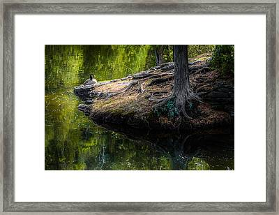 Sanctuary Framed Print by Karl Anderson