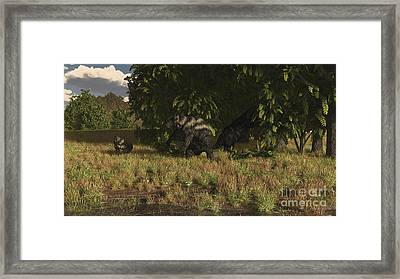 Eremotherium Approaches A Pair Framed Print by Arthur Dorety