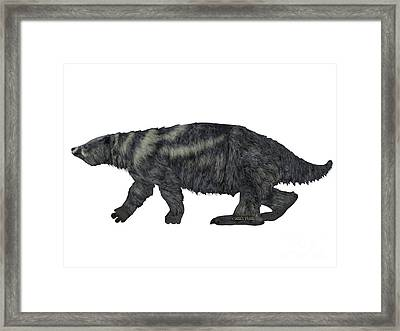 Eremotherium Sloth Side Profile Framed Print by Corey Ford