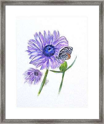Erika's Butterfly Three Framed Print