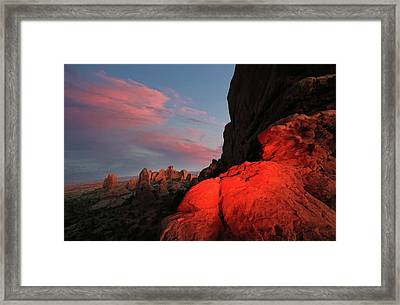 Erocktic Framed Print by Jerry LoFaro