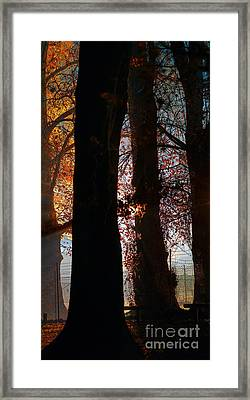 Escape Framed Print by Russ Brown