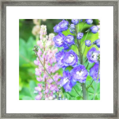 Framed Print featuring the photograph Escape To The Garden by Bonnie Bruno