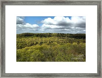Escarpment Spring 1 Framed Print