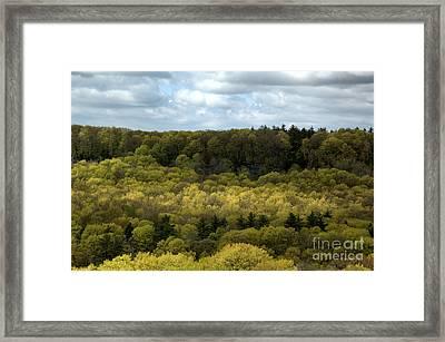 Escarpment Spring 2 Framed Print