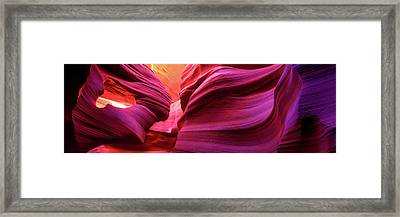 Essence Framed Print by Mikes Nature