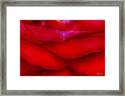 Essence Of Love Framed Print