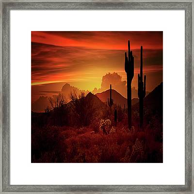 Framed Print featuring the photograph Essence Of The Southwest - Square  by Saija Lehtonen