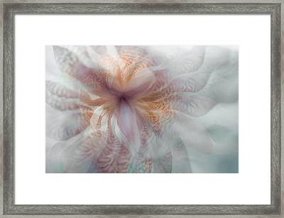 Essential Consciousness Framed Print by Jenny Rainbow