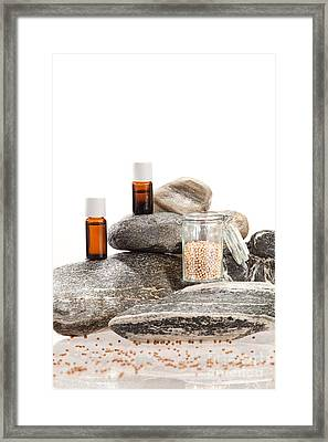 Essential Oil From Coriander Framed Print by Wolfgang Steiner