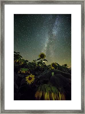 Estelline Framed Print by Aaron J Groen