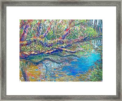 Estero River West Framed Print by Laurie Paci