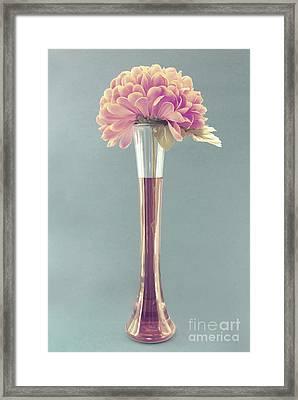 Estillo Vintage B Framed Print by Aimelle