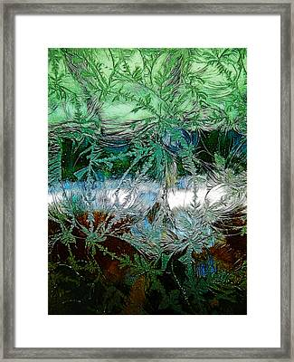 Etched Glass Framed Print by Cindy Wright