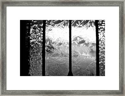Etched In Glass Framed Print by Laura DAddona