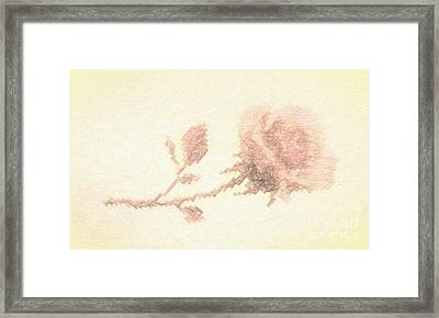Framed Print featuring the photograph Etched Red Rose by Linda Phelps