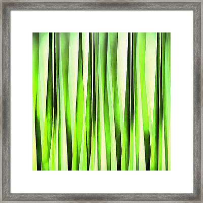 Eternal Evergreen Stripy Pattern Framed Print